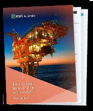Beach Energy case study download